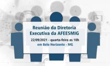 Reunião da Diretoria Executiva da AFEESMIG