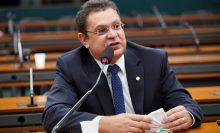 Comissão aprova limite de 30% de aulas a distância para curso de Medicina Veterinária